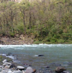 ひするまキャンプ川