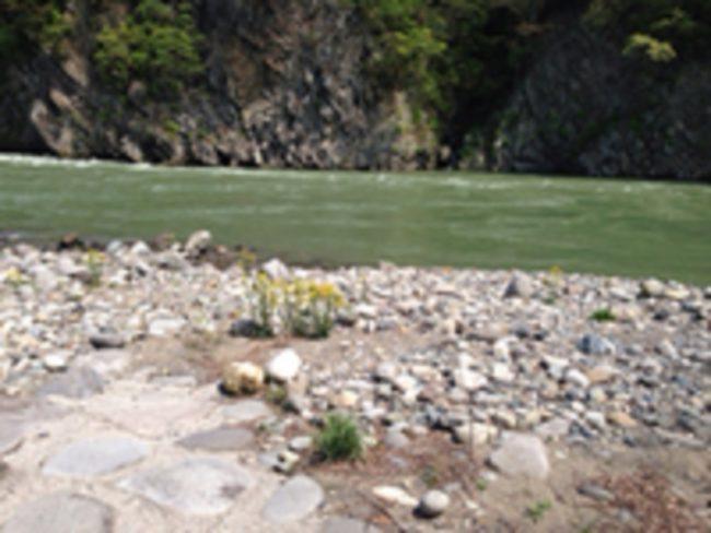 ひするまキャンプ場川
