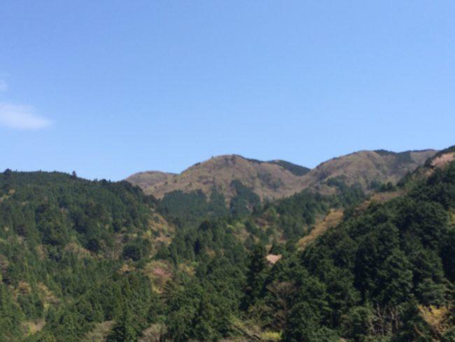 だるま山高原キャンプ場景色 (2)