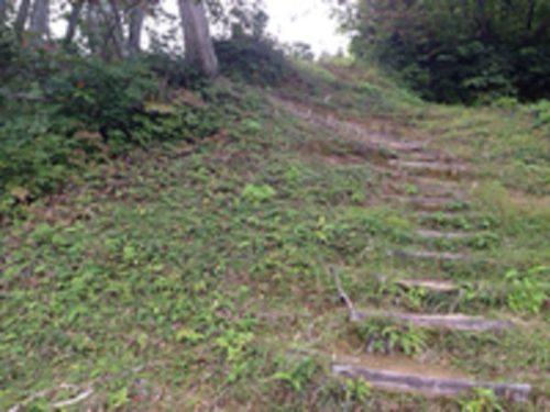 松之山キャンプ場炊事場の道