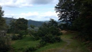松之山キャンプ場区画サイト