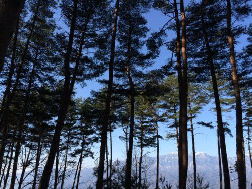 PICA八ヶ岳明野のアウトドアキッチンサイト