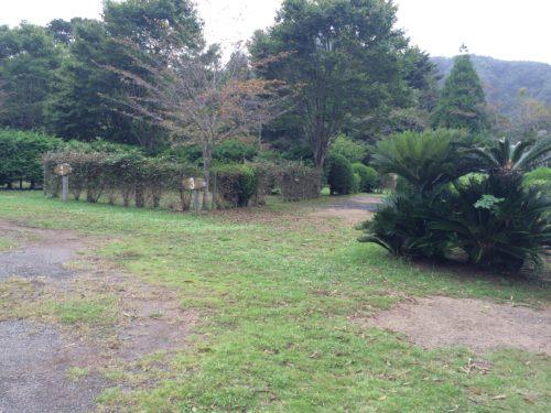 内浦山県民の森オートキャンプ場 サイト情報