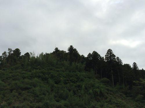 内浦山県民の森オートキャンプ場
