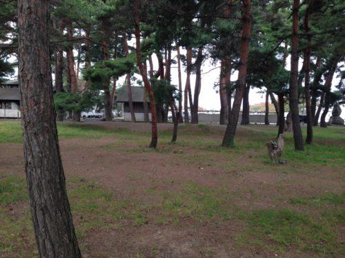 梓水苑キャンプ場・松香寮オートキャンプ場フリーサイト入口