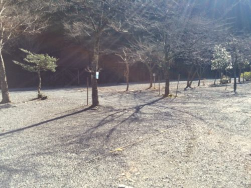 神之川キャンプ場 オートサイト区画写真