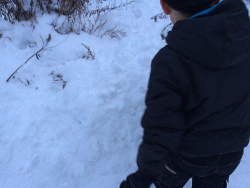雪遊びキャンプ (2)