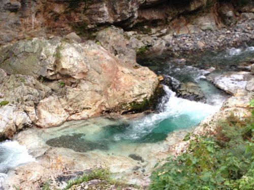蝉の渓谷川の流れ