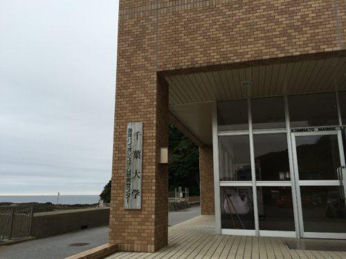 千葉大学海洋バイオシステム研究センター
