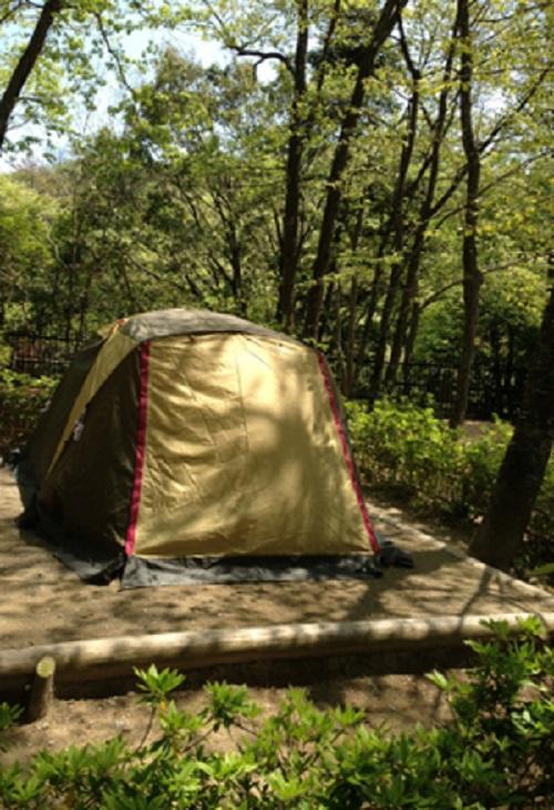 清和県民の森キャンプ場小サイト内にピスタ34を張る