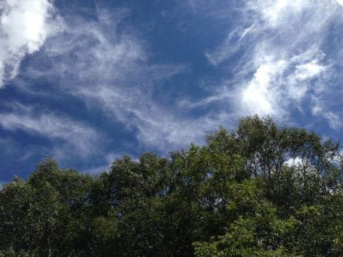漁礁カオスキャンプ場からの空の眺め