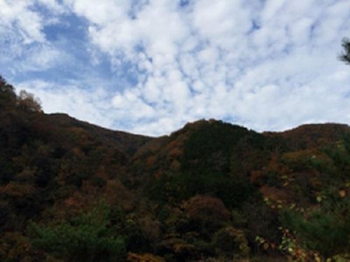 音久和キャンプ場からの風景