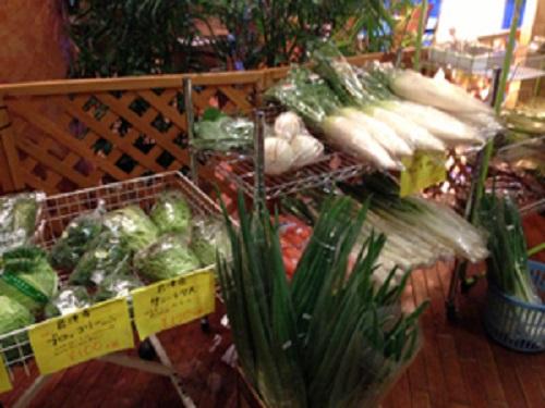 君津の森 で売っていた野菜