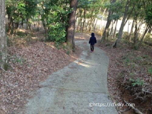 沼津市民の森キャンプ場場内散歩