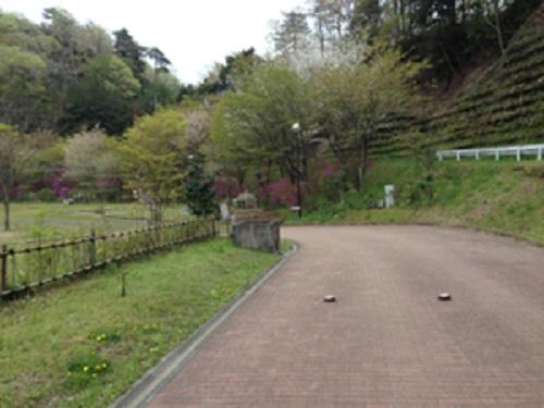 清和県民の森オートキャンプ場