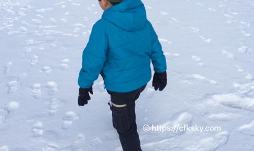 女神湖の氷上で走りまわってあそぶ