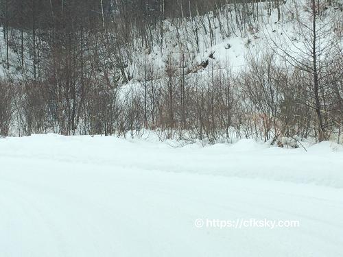 豪雪地帯の雪中キャンプに向かう道