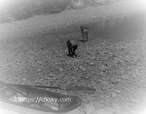 英虞湾の上陸先でカニ採り