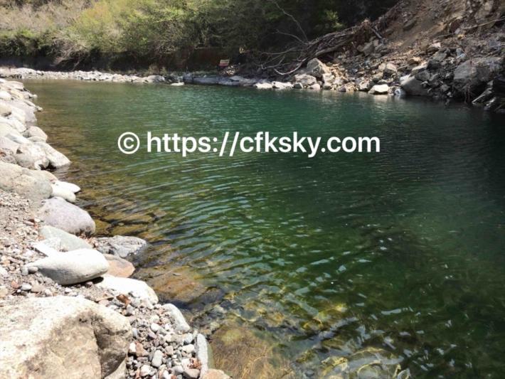 青根キャンプ場で川遊びができる道志川