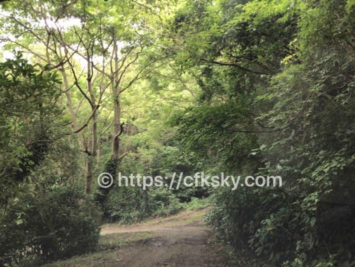 ぼっちの森 キャンプ場へのアクセスで未舗装道路の道