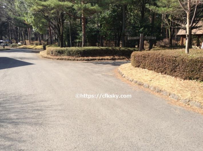 那須野が原公園オートキャンプ場内の通路はアスファルトです