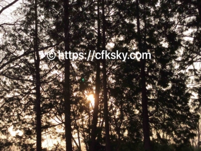 上野沼やすらぎの里キャンプ場で格安キャプを楽しんできた