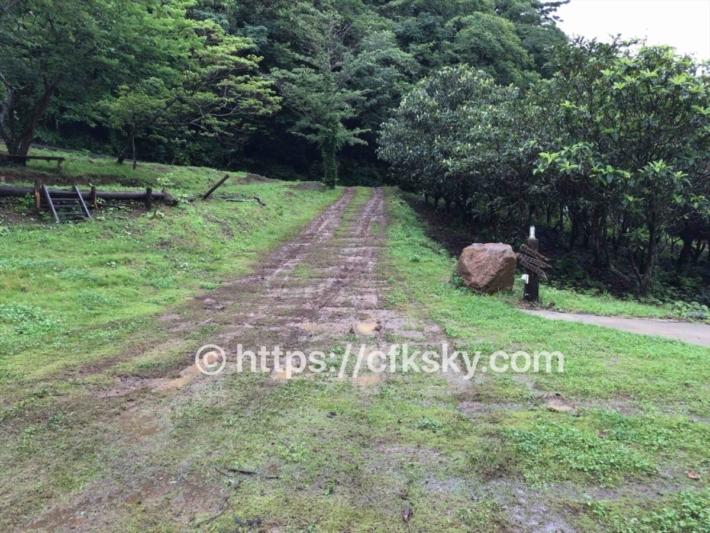 ぼっちの森 キャンプ場の場内の未舗装道路の道