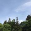 「あづま森林公園キャンプ場」電源付き格安4000円サイトで楽しんだわが家だけの貸し切りキャンプ