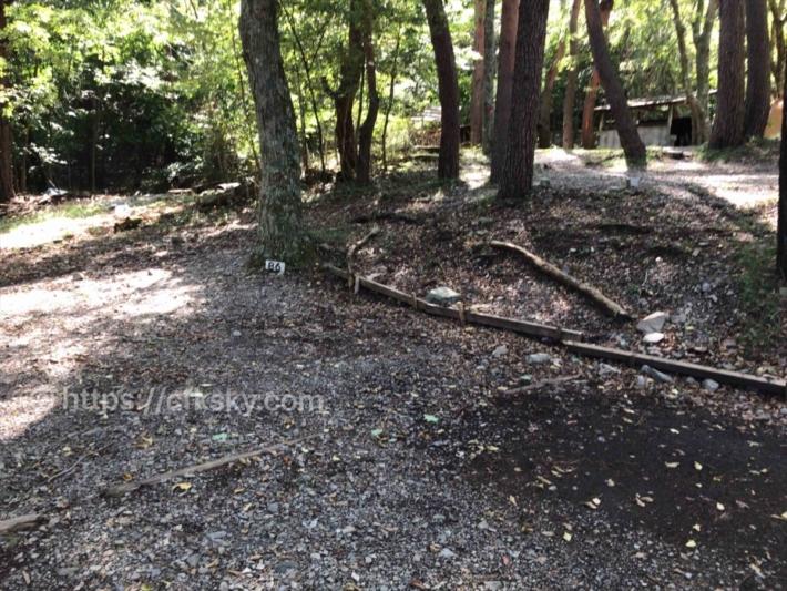 本栖湖いこいの森キャンプ場サイト写真
