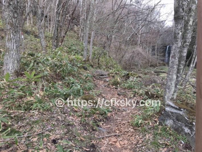 唐沢の滝へ行く舗装されていない道
