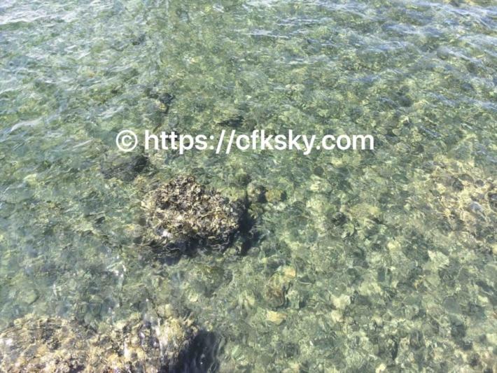 弁天島の呼子岩脈群の海