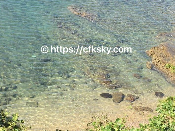 弁天島からの海
