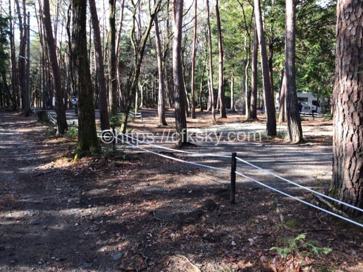 尾白の森キャンプ場フリーサイト