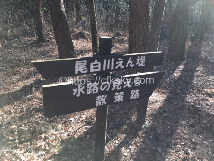 尾白の森キャンプ場から歩いて行ける尾白川堰堤