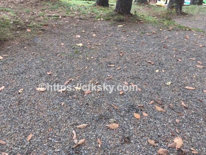 グリーンパーク尾瀬戸倉のサイト地面と通路状況