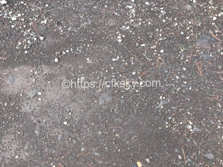 PICA Fujiyamaテントサイトのサイト地面状況
