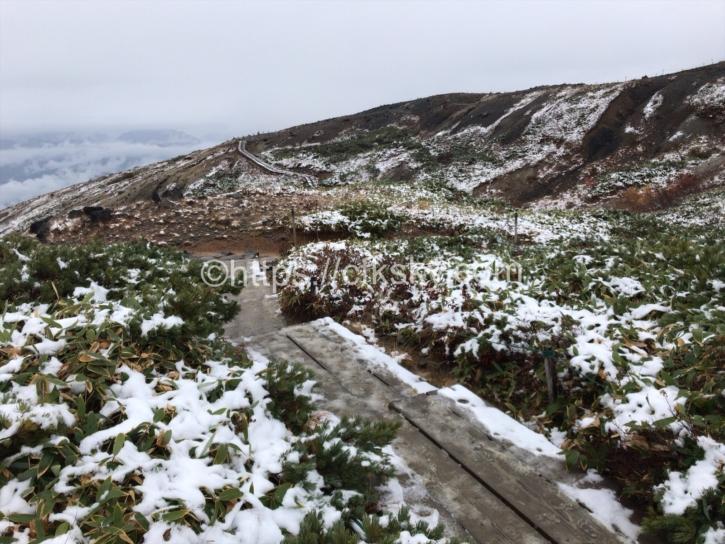 木道に雪が積もり始める