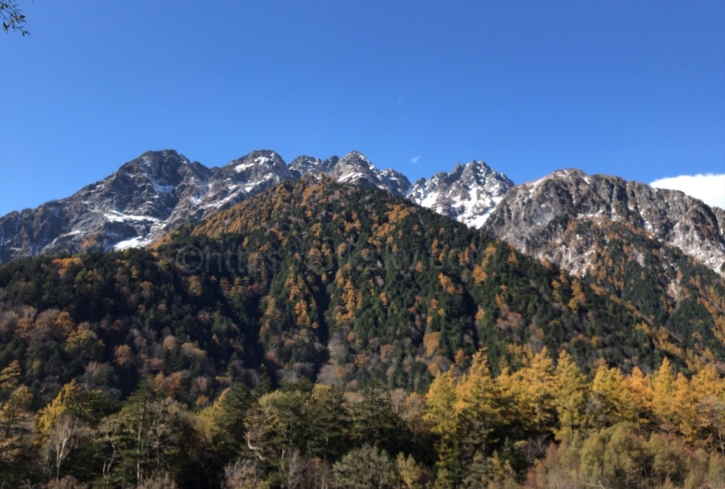 穂高連峰の景色