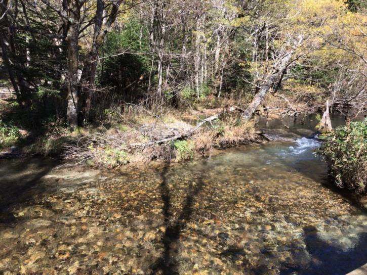 明神池から木道で整備された梓川沿いの道
