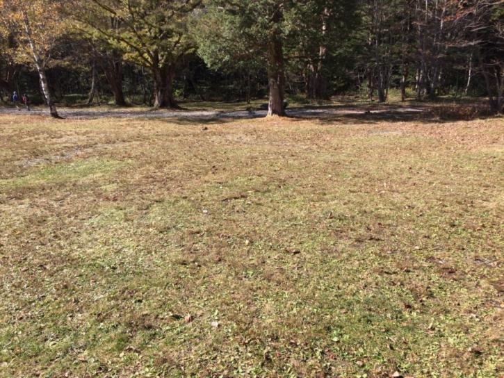 徳沢キャンプ場のきれいな芝の場内