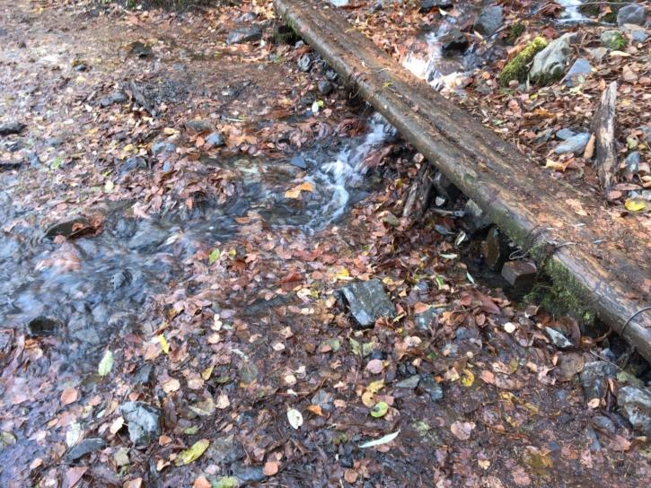 山の上からの湧き水で丸太が掛かっていた