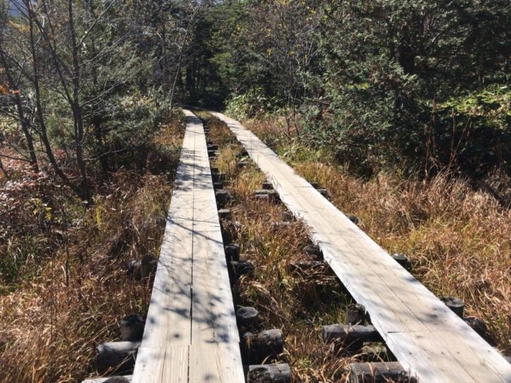 河童橋を渡った明神館までのルートの木道