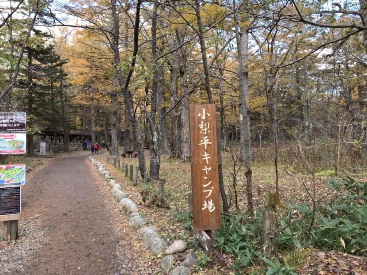 上高地にある小梨平キャンプ場