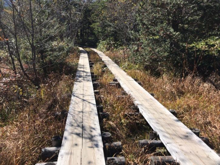 木道で整備された歩きやすい道