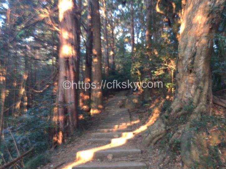 白雲橋コースで筑波山へナイトハイク