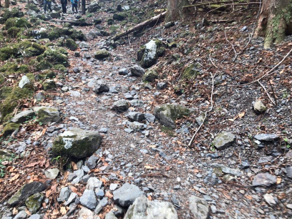 棒ノ折山・棒ノ嶺 登山の鎖場を過ぎた後の登山道