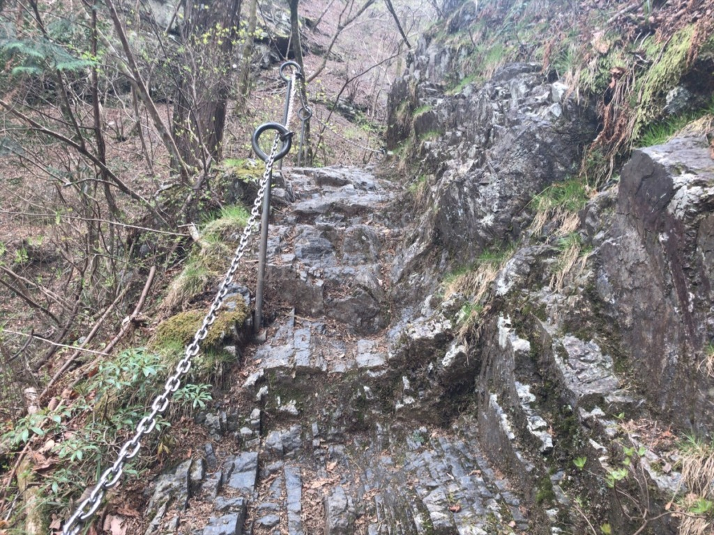 沢登り気分の棒ノ折山登山道