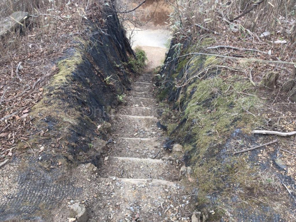 棒ノ折山・棒ノ嶺 登山からの下山コースにあった階段状になった道