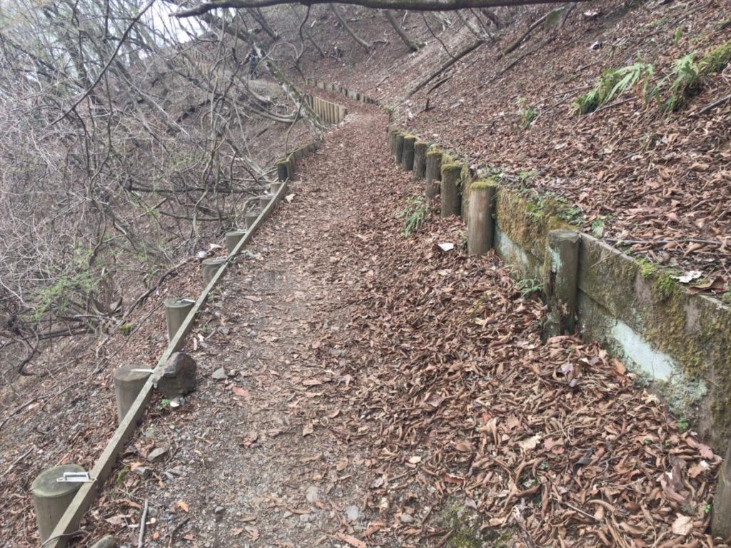 棒ノ折山・棒ノ嶺 登山の車道横にある休憩場所からの登山道