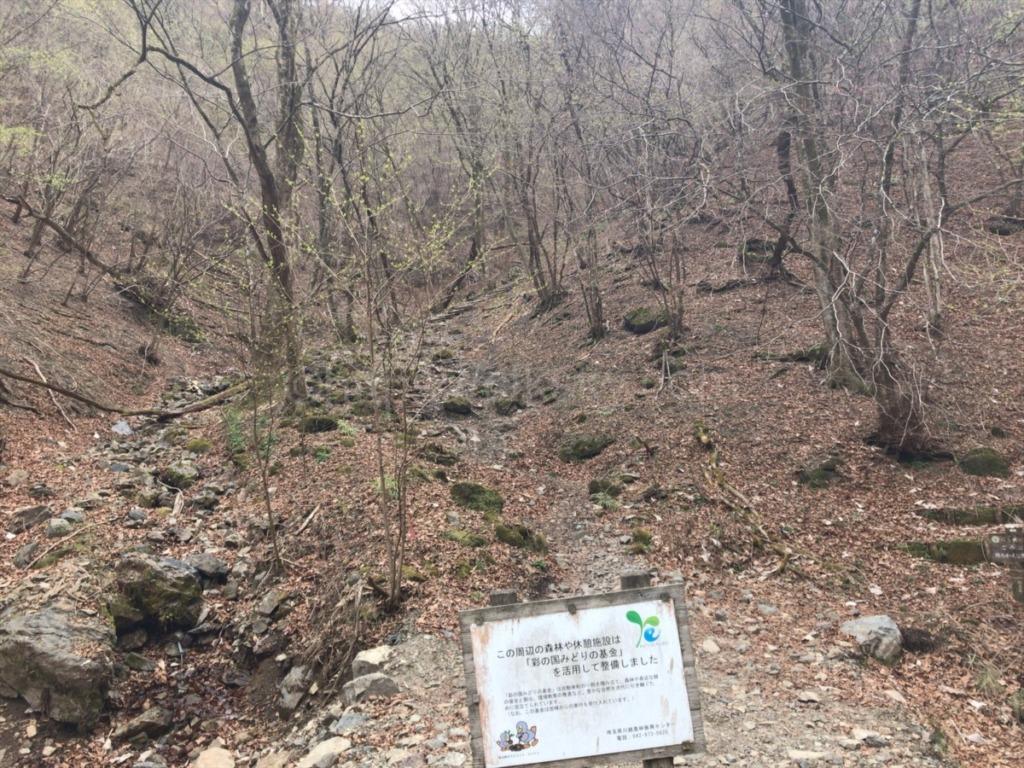 棒ノ折山の休憩できるベンチ広場からの登山道